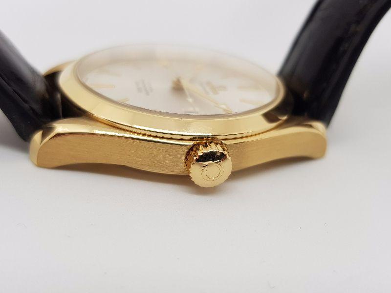 Omega SeaMaster Aquaterra Co-Axial 18k Gold6